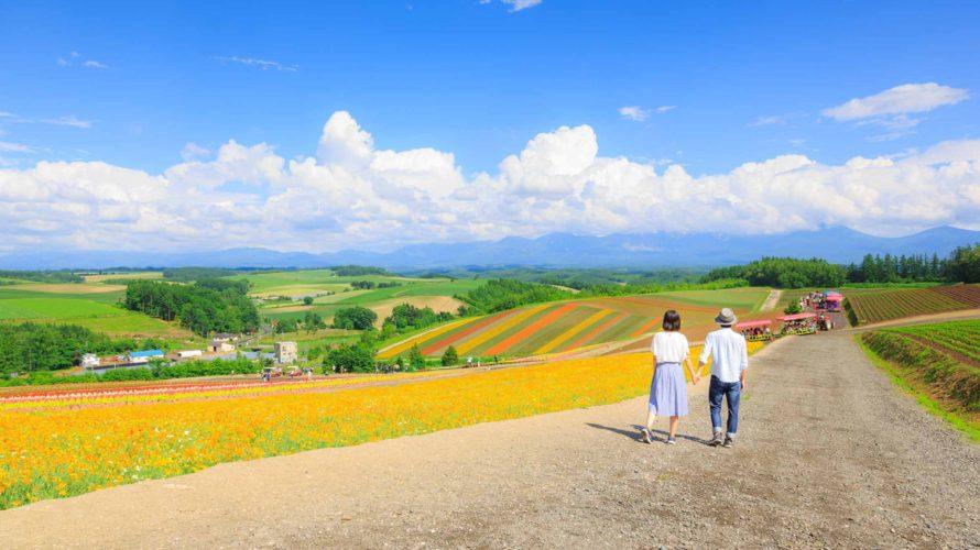 北海道に移住して1年、これからのブログの内容について。